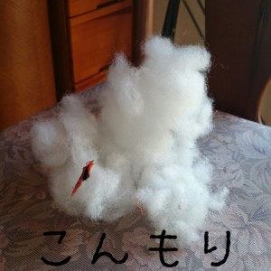 wpid-2014-01-17-20-39-02_deco.jpg