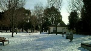 2014-02-12-02-15-03_deco
