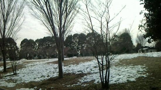 2014-02-12-13-20-07_deco