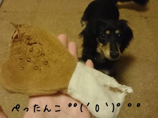 2014-03-03-01-43-48_deco