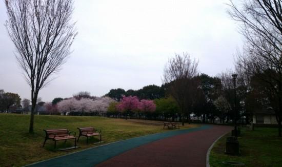 2014-04-03-13-43-08_deco