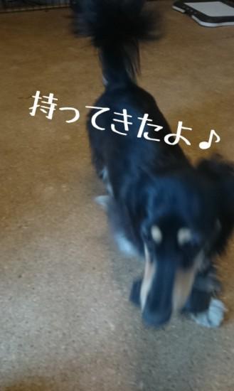 2014-06-09-19-37-49_deco