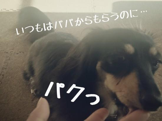 2014-11-21-09-52-01_deco