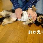 那須旅行 ~2015年春③ 夕食からおやすみ編~