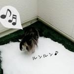 ベランダ雪遊び★