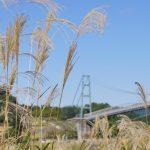 速報! 宮ヶ瀬湖で11月のお出かけイベント開催!